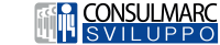 Logo-Consulmarc-png
